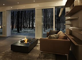 Private Residence - Martini 50 Freestanding Fireplace by EcoSmart Fire