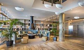 Hilton Auckland NZ Commercial Fireplaces 生物乙醇燃烧器 Idea