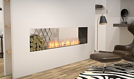 Living Area See-Through Fireplaces Flex Sery Idea