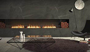 Flex 158SS.BX2 Fireplace Insert - In-Situ Image by EcoSmart Fire